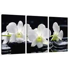 Set of 3 Panel Black White Floral Canvas Wall Art Flowers Picture 3051