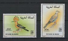 MAROC 1990 MOROCCO HUPPE FASCIEE TOURTERELLE BIRDS OISEAUX VOGEL AVES STAMPS MNH