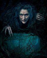 Meryl Streep 8x10 Photo 056