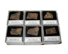 NWA 064 L6 meteorite slice in Square display case Early NWA number