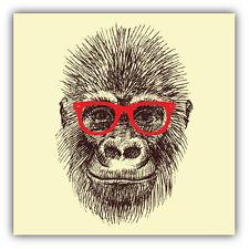 Orangutan Monkey Head Car Bumper Sticker Decal 5' x 5'