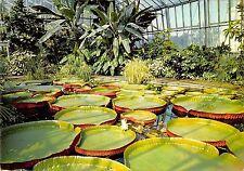 B101738 the royal botanic garden edinburgh scotland