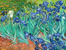 Van Gogh 1889, Irises Saint Remy Iris - Fade Resistant HD Art Print or Canvas