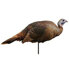 Montana Spring Fling Hen Turkey Decoy