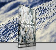 200 WINTER SNOW ICE DIGITAL PHOTOSHOP OVERLAYS BACKDROPS BACKGROUNDS PHOTOGRAPHY