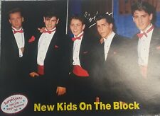 Vintage New Kids on the Block Pin Up Picture Magazine Pic