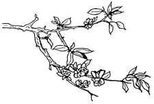 Unmounted Rubber Stamp, Floral Stamps, Apple Tree Branch, Apple Blossom, Asian