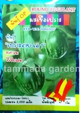 1 pack 2000 seed thai Rond eggplant Vegetable raw or cook