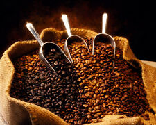 Up to 15 lbs Colombian Medellin Supremo Coffee Beans 17/18, Always Fresh Beans