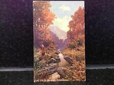 317. The Falls, Novar Rossshire Postcard