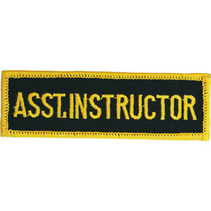 Job Lot 30 x Embroidered Assistant Instructor Badges