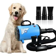 Portable Pet Hair Dryer Dog Cat Grooming Hair Blower Cheap Low Noise 2000W