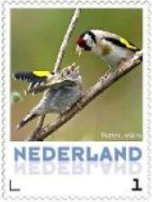 Nederland 2013 Ucollect Putter (groen) vogel bird oisseau  postfris/mnh