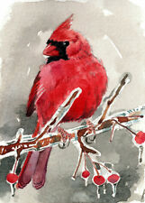 ACEO Limited Edition- Winter crimson, Cardinal,Gift for her