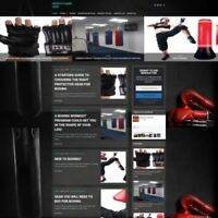 BOXING SHOP - Mobile Friendly Responsive Website Business For Sale + Domain