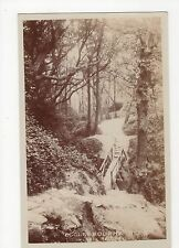 Sussex, Ecclesbourne Glen Hastings Broderick of Ryde Real Photo Postcard, A713