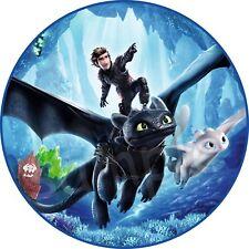 Drachenzähmen leicht gemacht 3 Tortendeko Tortenaufleger Party Deko Dragons dvd