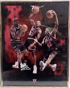 Framed Chicago Bulls Running of The Bulls Poster 1996 Jordan Pippen Rodman 20x16