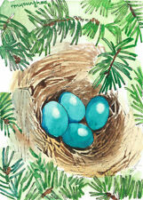 ACEO Limited Edition- Bird nest, Robin print of original watercolor