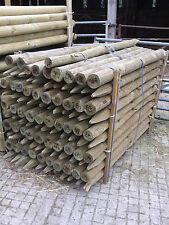 1.65m x 75m/100mm peeled round pointed post UC4 pressure treated farm fencing