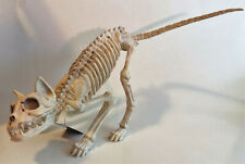 Gloom Room Halloween Creepy Scary Animal Skeleton Prop Decoration New With Tags
