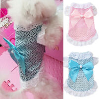 Small Dog Princess Dress Spring Summer Pet Puppy Clothes Skirt for teddy 2019