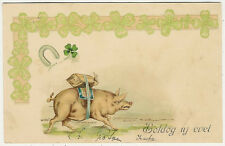 Pigs, New Year, Pig with a Coin Bag on His Back, Funny Old Postcard 1903