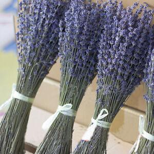 100g Dried Natural Lavender Flower Bouquets Artificial Flower Home Decoration