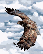 """Eagle in the sky DIY Paint By Number Kit Acrylic Painting on Canvas 16x20"""" 550"""