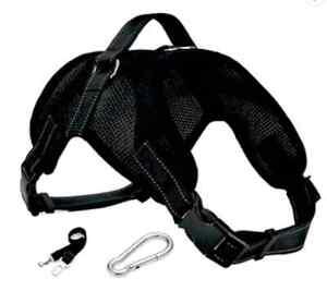 Dog Harness Easy Fit C/W In Car Seatbelt Headrest & Boot Restraint