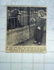 1949 Sea Lion Chatting To Christine Watts, Leigh-on-sea
