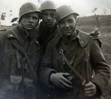 DVD Regio Esercito - Gruppi di combattimento - Divisione Friuli