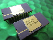 AM9217ADC, RARE COLLECTABLE RAM AMD, PURPLE CERAMIC GOLD TOP AND PINS
