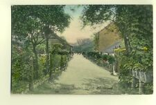 tp6905 - Kent - Cook's Orchard, in Bostall Wood, at Plumstead - Postcard