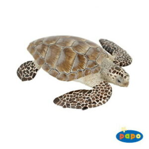 Cacouanne Turtle - Papo (65005): vinyl miniature toy animal