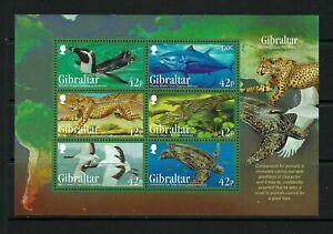 Gibraltar 2013 - Endangered Animals 3rd Series - Miniature Sheet - MNH