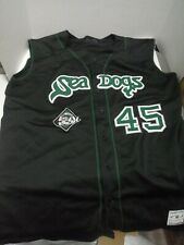 Portland Sea Dogs Jersey Authentic Size Large #45 Boston Red Sox minor League