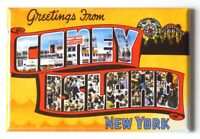 """Greetings from Saratoga Springs New York FRIDGE MAGNET travel souvenir /""""style A/"""""""