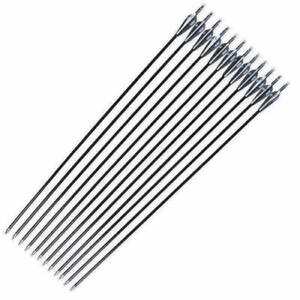 12PCS 30 Zoll Carbonpfeile Bogenschießen SP500 für Compound / Recurve Bogenjagd