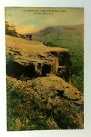 Catskill Mountains New York Inspiration Rock Kaaterskill Park Vintage Postcard