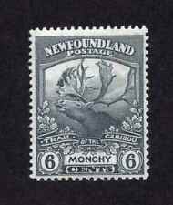 Newfoundland #120 6 Cent Grey Trail of the Caribou Issue MNH