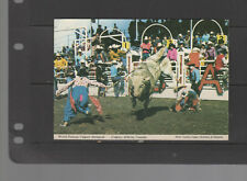 POST CARD  Rodeo CLOWNS Calgary Stampede Bullriding 1976