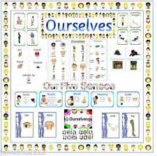 KS1 Y1 Science -  OURSELVES DISPLAY RESOURCES - HEADING WORDMAT POSTERS BORDER