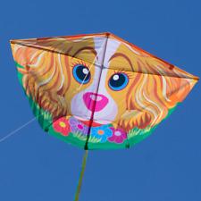 Dragón Fun Flyer Dog, a partir de 6 años de edad, tamaño: 120x78cm, con los dragones cuerda