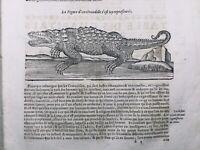 Crocodile 1614 Herpétologie Éthologie Rare Gravure Ambroise Paré reptile