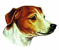 Embroidered Ladies Short-Sleeved T-Shirt - Jack Russell Terrier BT2360