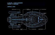 Framed Print - Star Trek Blueprint USS Voyager Dorsal View (Picture Poster Art)