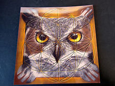 OWL Totem Spirit Animal Stone Grid Layout Cardstock 8x8in HIDDEN UNKNOWN LET GO