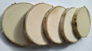 Natural Wooden Birch Slice Cup Coaster Round Craft Wood Sizes Shabby Chic Discs