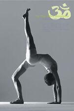 Eka Pada Urdhva Dhanurasan Yoga Pose Art Poster LG